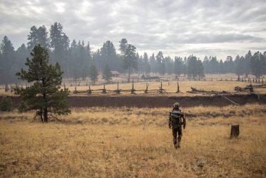 Arizona Kaibab Elk Hunting