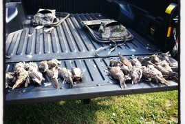Opening Day 2013: Opening day dove season wrap-up